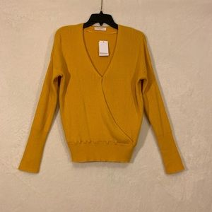 Elodie V Neck Sweater Size Large NWT